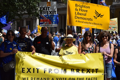 Brighton and Hove Lib Dems At March for Europe 23-06-18