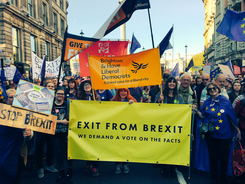 Brighton and Hove Lib Dems at the People's Vote March in Oct 2018